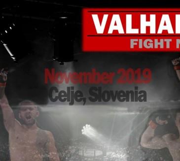 Valhalla fight night 2 napovedana za mesec november !!