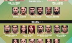 UFC on ESPN+ 28 results
